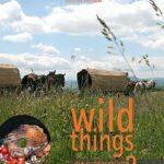 Herbstgewinnspiel; wild things, Kochbuch