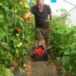 Unser Koch und Gärtner Kostas vom Honigtal