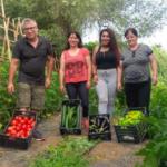 Im Honigtal baut Koch Kostas und seine Familie Gemüse im eigenen Garten an.