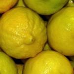 Zitronen aus der Toskana © quarknet.de