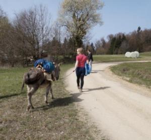 Slow Travel - das kann man von den Eseln lernen.