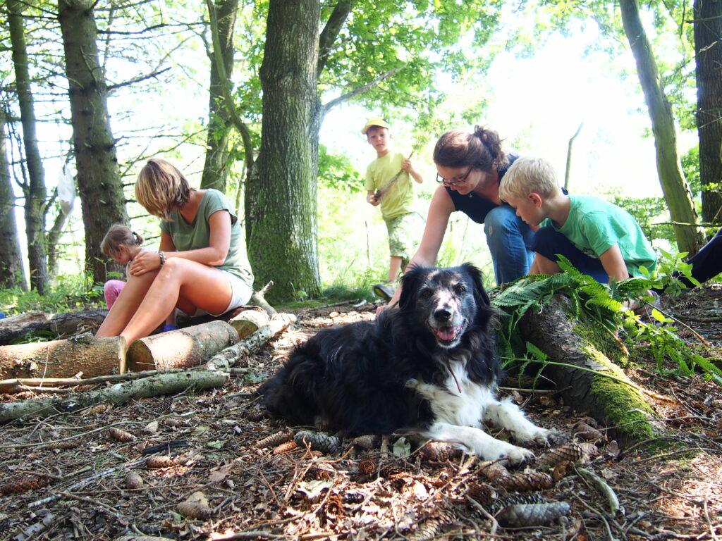 Hund und Familie im Wald