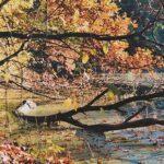 Urlaub im Herbst: Die schönsten Ideen