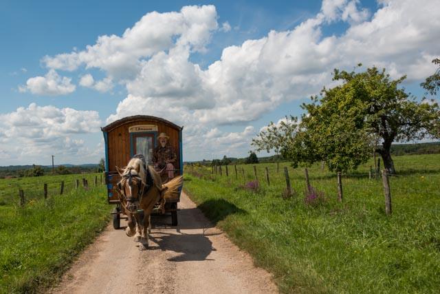 Mit dem Pferdewagen durch die grüne Landschaft der Vogesen