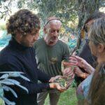 """Reise """"Rund um die Olivenernte auf Korfu"""" - ein Erfahrungsbericht"""