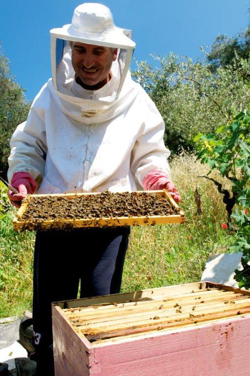 Kostas Sinadinos - Koch und Imker im Honigtal auf Korfu