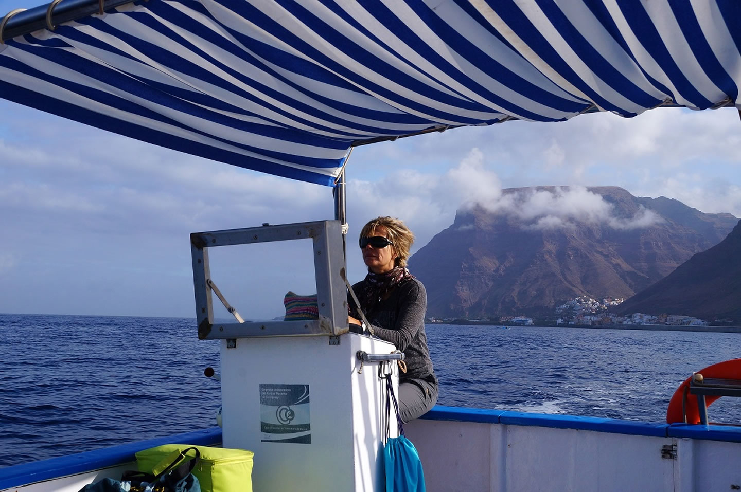 whale watching mit guide oceano gomera