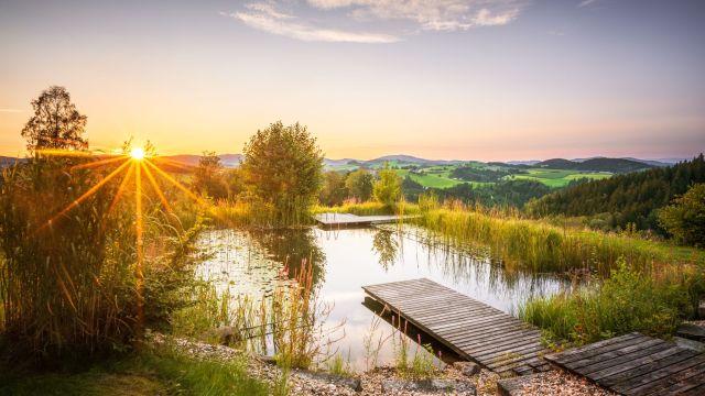 Österreich-Urlaub mit Kindern buchen - ReNatour Reisen
